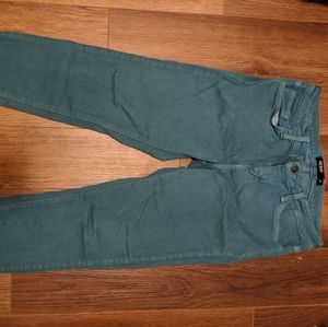 Stitch Fix teal skinny pants